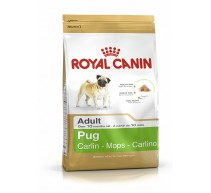 Royal Canin Pug Adult crocchette per cani Carlino