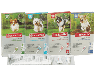 Advantix (Bayer) spot-on per cani