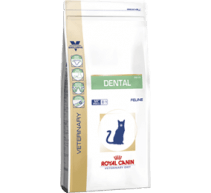 Royal Canin Dental DSO 29 Veterinary Diet crocchette per gatti