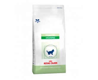 Royal Canine Pediatric Weaning crocchette per gattini
