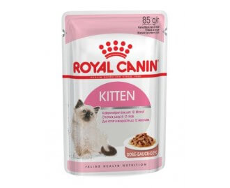 Royal Canin Kitten cibo umido per gattini