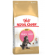 Royal Canin Maine Coon Kitten crocchette per gattini di Maine Coon
