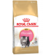 Royal Canin Persian Junior crocchette per gattini di Persiano