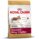 Royal Canin Cavalier King Charles Adult crocchette per cani Cavalier King Charles