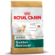 Royal Canin Golden Retriever Junior crocchette per cuccioli di Golden Retriever