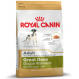 Royal Canin Great Dane Adult crocchette per cani Alano