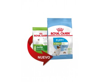 Royal Canin X-Small Junior crocchette per cuccioli di taglia mini/toy