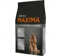 Maxima Medium Adult Light crocchette per cani di taglia media