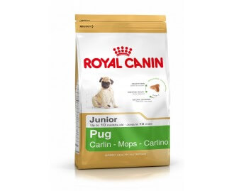 Royal Canin Pug Junior crocchette per cuccioli di Carlino