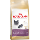 Royal Canin Breed British Shorthair crocchete per gatti British Shorthair
