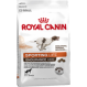 Royal Canin Sporting Life Endurance 4800 crocchette per cani